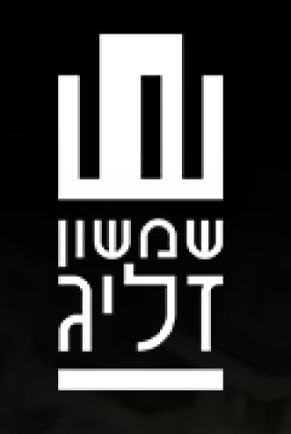שמשון זליג בע